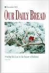 Our Daily Bread Cover December 2013